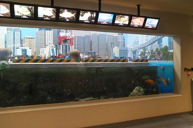 しながわ水族館「品川と海」
