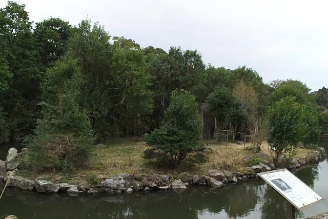 平川動物公園 ワオキツネザルの島