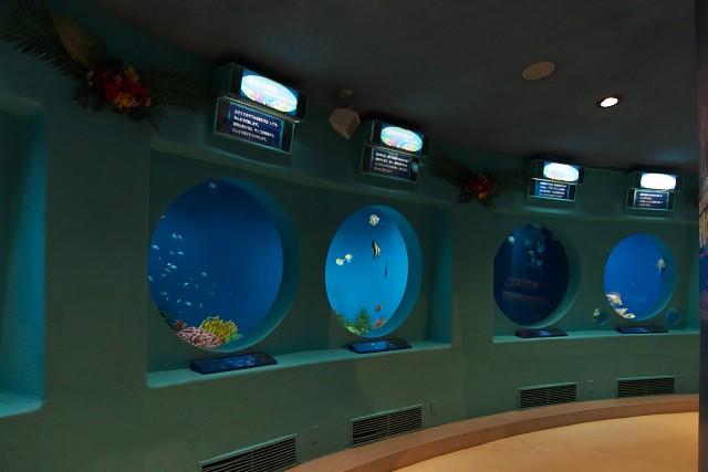 京急油壺マリンパーク 海の遊歩道水槽