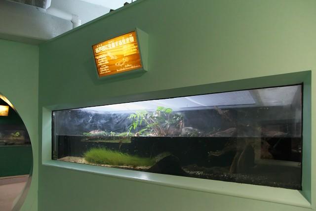 京急油壺マリンパーク みうら自然館内部