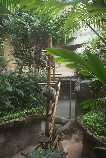 高知県立のいち動物公園 ジャングルミュージアム内