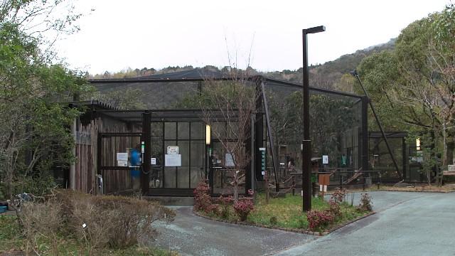 高知県立のいち動物公園 リスの小道