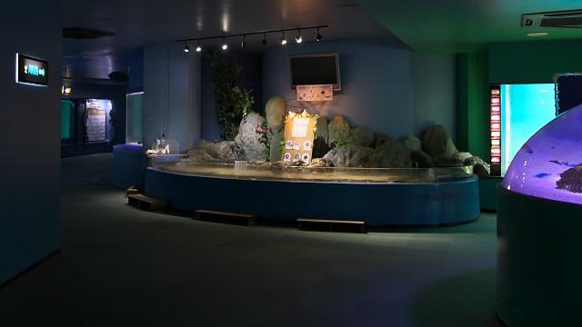 新屋島水族館 館内