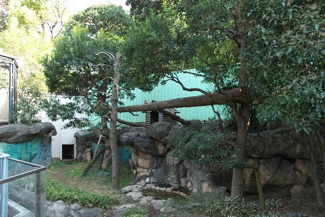 江戸川区自然動物園 レッサーパンダ展示場