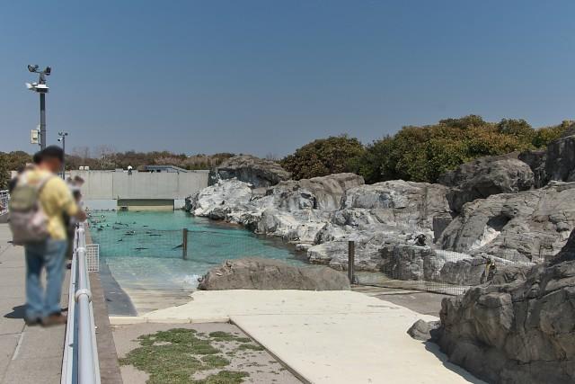 葛西臨海水族園 「ペンギンの生態」エリア