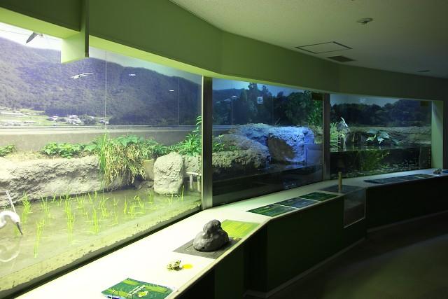 姫路市立水族館 新館