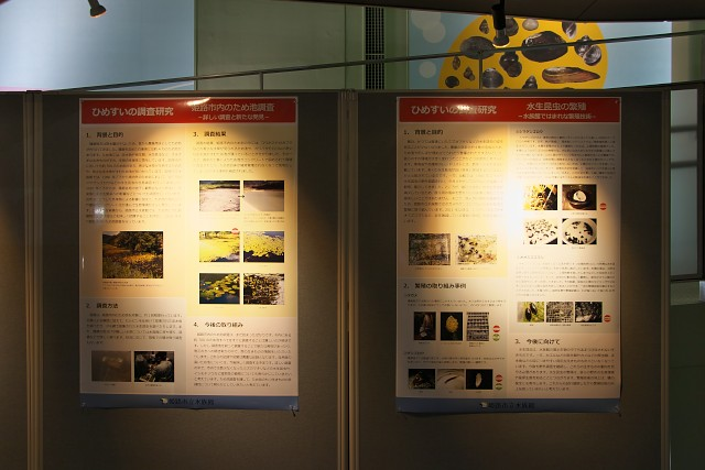 姫路市立水族館 調査研究内容の公開