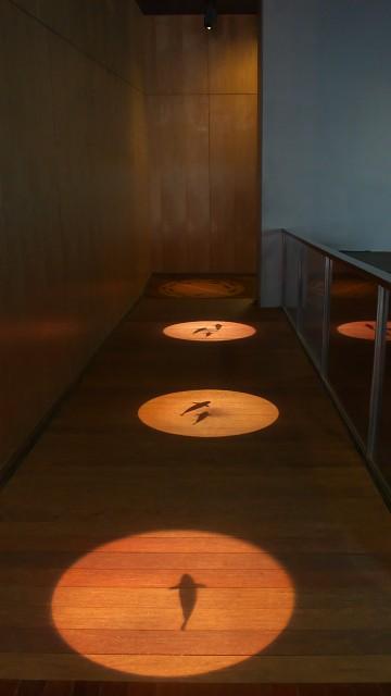 山梨県立富士湧水の里水族館 館内