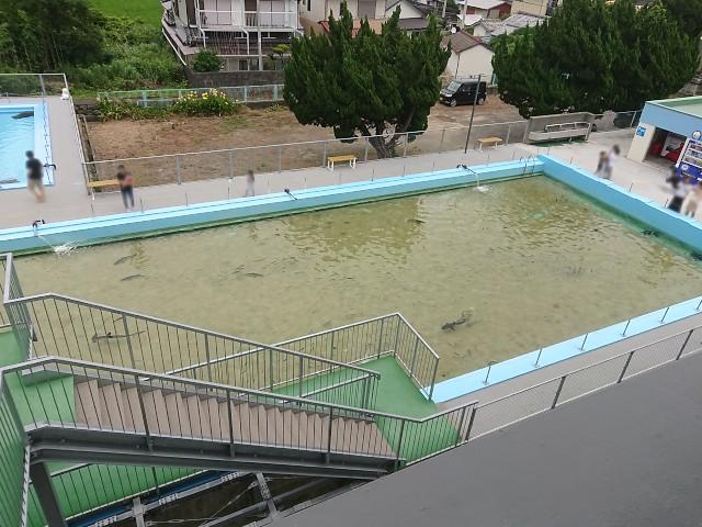 むろと廃校水族館 屋外大水槽