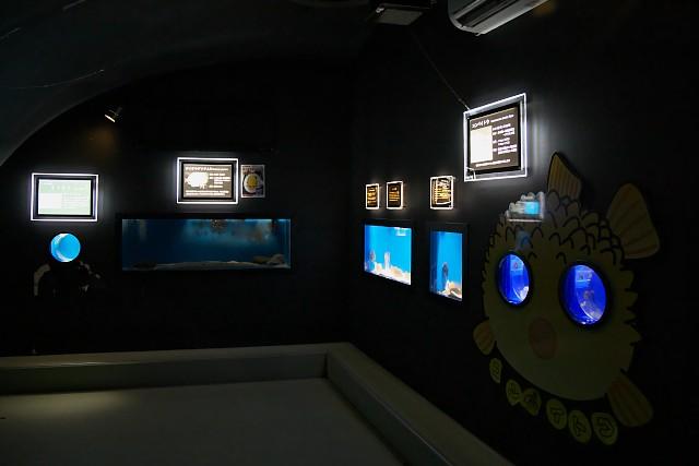 越前松島水族館 こんぺいとうハウス内部