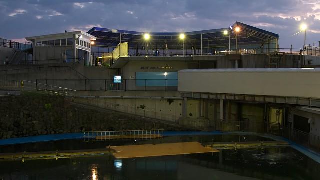 越前松島水族館 ドルフィンプール群