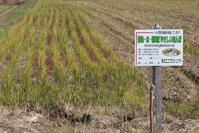 新潟県特別栽培農産物認証ほ場標識
