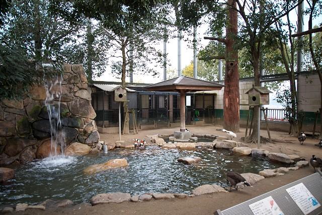 福山市立動物園 フライングケージ内部
