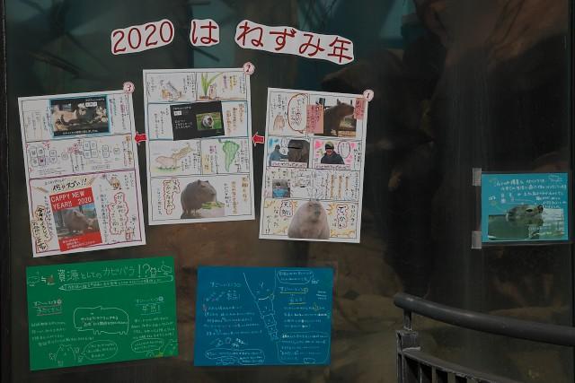 福山市立動物園 園内掲出物