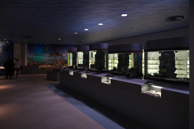 志摩マリンランド 古代水族館エリア