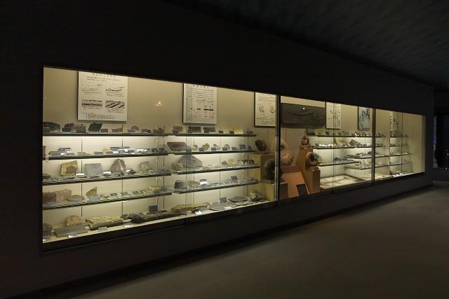 志摩マリンランド 化石展示