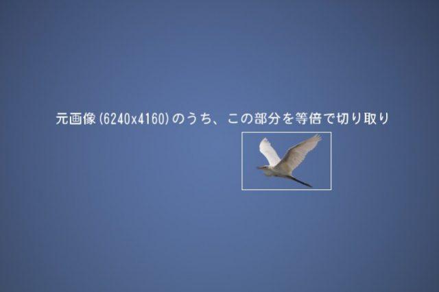 元画像のイメージ